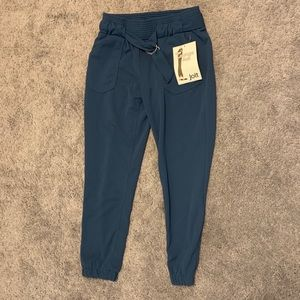 Dressy jogger style pants